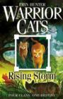 Image for Rising storm