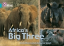 Image for Africa's big tree
