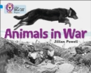 Image for Animals in war