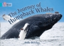 Image for The journey of humpback whales