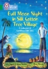 Image for Full moon night in Silk Cotton Tree Village  : a collection of Caribbean folk tales