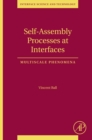 Image for Self-assembly processes at interfaces: multiscale phenomena : v. 21