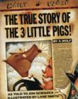 Image for The true story of the 3 little pigs