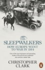 Image for The sleepwalkers  : how Europe went to war in 1914