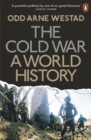 Image for The Cold War  : a world history