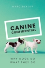 Image for Canine confidential: why dogs do what they do