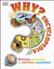Image for Why? Encyclopedia: brilliant answers to baffling questions.