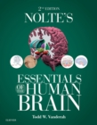 Image for Nolte's essentials of the human brain