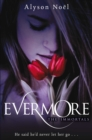 Image for Evermore