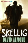 Image for Skellig : TV Tie-In