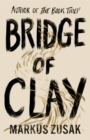 Image for Bridge of Clay