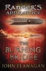 Image for The burning bridge