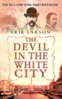 Image for The devil in the White City  : murder, magic and madness at the fair that changed America
