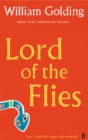 Image for Lord of the flies  : a novel