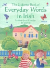 Image for The Usborne book of everyday words in Irish  : Leabhar focal Gaeilge do gach lâa