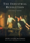 Image for The industrial revolution  : Britain, 1770-1810