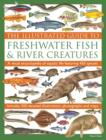 Image for The illustrated guide to freshwater fish & river creatures  : a visual encyclopedia of aquatic life featuring 450 species