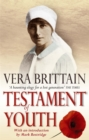 Image for Testament of youth  : an autobiographical study of the years 1900-1925