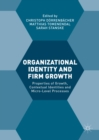 Image for Organizational identity and firm growth: properties of growth, contextual identities and micro-level processes