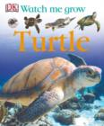 Image for Turtle.