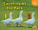 Image for Counting at the park