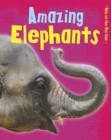 Image for Amazing elephants