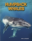 Image for Humpback whales