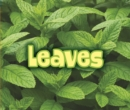 Image for All about leaves