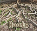Image for All about roots