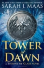 Image for Tower of dawn
