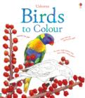 Image for Birds to Colour