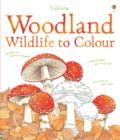 Image for Woodland Wildlife to Colour