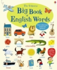 Image for The Usborne big book of English words