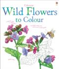 Image for Wild Flowers to Colour