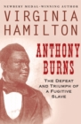 Image for Anthony Burns: the defeat and triumph of a fugitive slave