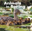 Image for Animals in spring