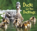 Image for Ducks and their ducklings