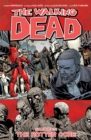 Image for The walking deadVolume 31