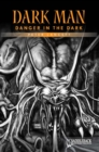 Image for Danger in the Dark (Orange Series)