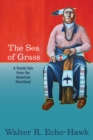 Image for Sea of Grass