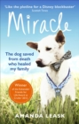 Image for Miracle  : the extraordinary dog that refused to die