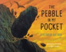 Image for The pebble in my pocket  : a history of our Earth