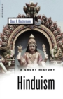 Image for Hinduism  : a short history