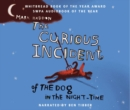 Image for The Curious Incident of the Dog in the Night-time