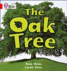 The Oak Tree : Band 02b/Red B - Owen, Anna