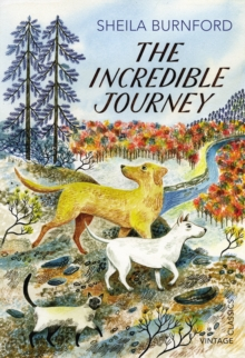 The incredible journey - Burnford, Sheila