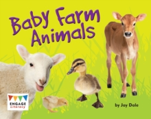 Baby farm animals - Dale, Jay