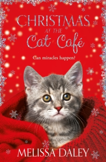 Christmas at the cat cafâe