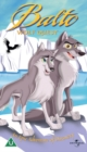 Image for Balto 2 - Wolf Quest