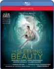 Image for The Sleeping Beauty: The Royal Ballet (Kessels)